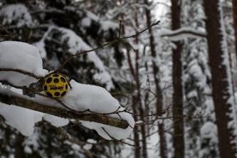 MoonBall dans la neige