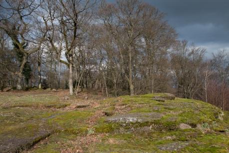 château de Warthenberg_4700