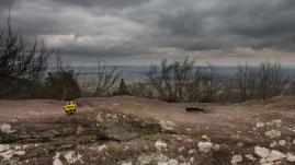 Mont Saint Michel alsacien vue sur la vallée_4643