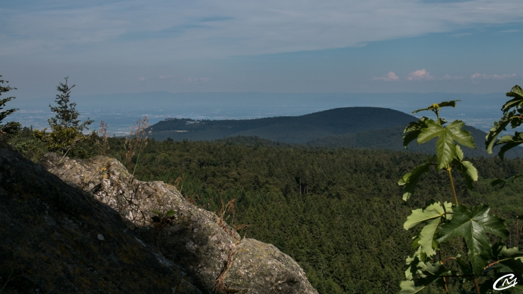 Vue sur le Mt Saint Odile