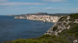 Sur les falaises de Bonifacio